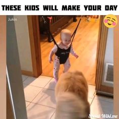 No the freaking dogs are making my day they are so cute and gentle with the babies. Funny Animal Videos, Cute Funny Animals, Funny Animal Pictures, Animal Memes, Cute Baby Animals, Funny Babies, Funny Kids, Cute Babies, Cute Gif