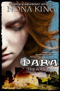 Para fantasy adventure, NaNoWriMo 2012 winner The Soul Cycle | Book 3