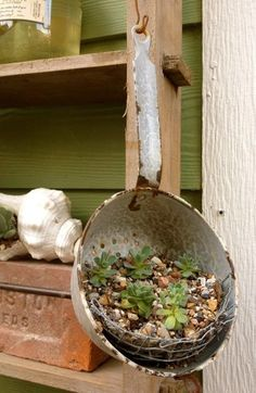 Strainers are great for succulents. Strainers are great for succulents. Garden Whimsy, Garden Junk, Diy Garden Decor, Garden Pots, Succulents In Containers, Container Plants, Container Gardening, Blooming Succulents, Cacti And Succulents