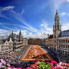 Cada dos años casi un millón de begonias invaden la Grand Place de Bruselas durante 3 días en agosto para conformar uno de los mayores placeres visuales posibles en la capital de Europa: la aclamada Alfombra de Flores.
