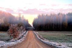 Šaltas rudens rytas (Kazys Žąsytis)