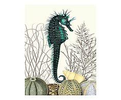 Print Sea Horse Urchins, multicolour, 36 x 28 cm