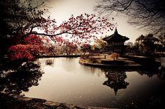 Korea photographed by Jin Han