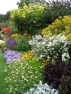Large perennial border. I could see doing this along the back.