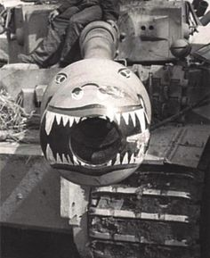 Crews love their Tigers I! 24 images you may not have seen before