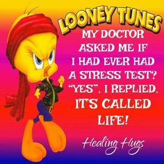 Funny Signs, Funny Jokes, Cartoon Jokes, Cartoons, Cartoon Characters, Quotes To Live By, Life Quotes, Fun Quotes, Tweety Bird Quotes