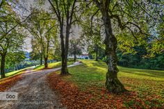 Walking by RB10 #nature