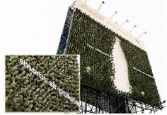 green infrastructure vertical and horizontal.