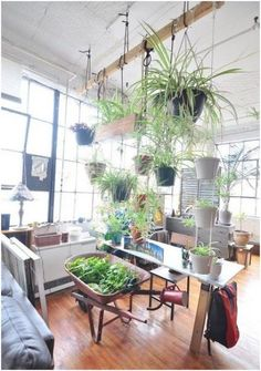 Incredible Indoor Vertical Garden Apartment, When you get started thinking vertically, you're discover your very own innovative methods to create vertical gardens. This vertical garden provides y. Diy Hanging, Hanging Plants, Indoor Plants, Indoor Gardening, Hanging Gardens, Indoor Outdoor, Sweet Home, First Apartment, Apartment Therapy