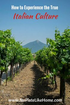 Off the beaten path of tourism into the valleys of the mountains of Italy where my family lives. A vineyard tour, best places to eat pizza, pasta, pastries and cappuccino bars one hour from Naples.