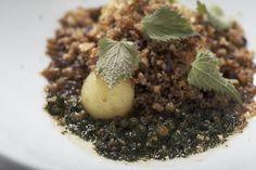 potato field - molecular gastronomy