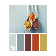 Color Pallette ❤ liked on Polyvore