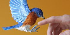 Taking origami and papier mache to the next level... Lifelike Birds Made Entirely From Paper