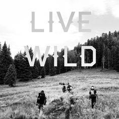 Live Wild - Mt Baldy Arizona