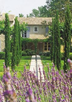 Ah, a Provence… | Casamenteiras