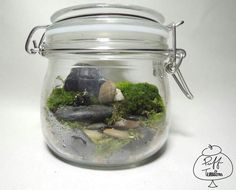 Classic Biker Terrarium  Find us on Facebook :: puff terrariums #puff #terrarium #home #work #sky #decor #decoration #plant #cactus #garden #cat #puppy #wedding #centerpiece #green #moss #gift #DIY #crafts #art #cute  #jar #happy #bottle #yolo #lol #hkig #biker