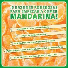 #Infografia #Salud 5 #Razones poderosas para empezar a #Comer #Mandarina...  1.- Descongestiona las #ViasRespiratorias. 2.- Limpia impurezas del #Higado. 3.- Tiene #Flavonoides que protegen contra el #Cancer. 4.- Ayuda a #BajarDePeso pues produce saciedad con pocas #Calorias. 5.- Por su #VitaminaC mantiene en buen estado la piel.  Vía @Candidman