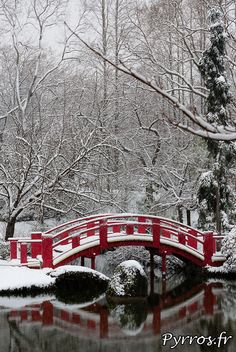 Snow at the Japenese Garden of Toulouse. Toulouse, capital of France's southern Occitanie region, is bisected by the Garonne River and sits near the Spanish border. It's known as La Ville Rose ('The Pink City') due to the terra-cotta bricks used in many of its buildings. Its 17th-century Canal du Midi links the Garonne to the Mediterranean Sea, and can be traveled by boat, bike or on foot. Photo by Pyrros
