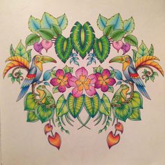 """Dana Catalano with a page from Johanna Basford's """"Magical Jungle""""; Sept 2016 #johannabasford #secretgarden #adultcoloring"""