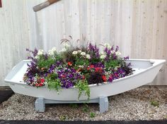 Row Your Way to Color with Annuals Revisited | CAROLYN'S SHADE GARDENS