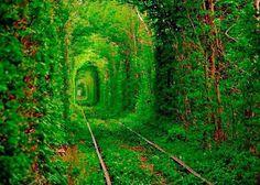 Túnel del amor Ucrania.