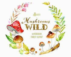 Wild Mushrooms. Watercolor forest clipart, wreath, autumn, leaves, fairytale, floral, halloween, harvest, thanksgiving, greetings, woodland