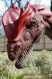 real dinosaurs - Google Search