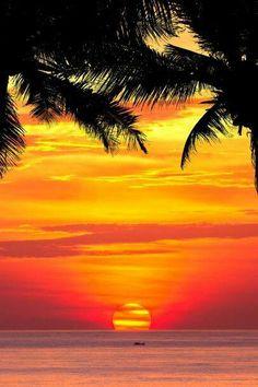 南国の夕陽の色は、どんどん濃くなってる。オレンジ色の水飴が煮詰められていく感じ。今日が終わります。@bangkok  pm5:00