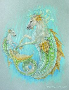 Horse Dragon & Baby (hippocampus) by pawtraitart