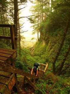 West Coast Trail, Vancouver Island, British Columbia, Canada.