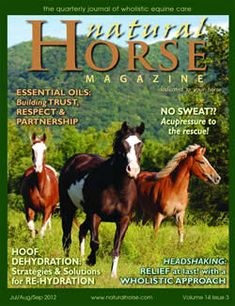 My first published article appeared in Natural Horse Magazine.  Find out how equine massage can help horses with laminitis.