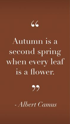 Words Quotes, Wise Words, Me Quotes, Motivational Quotes, Inspirational Quotes, Great Quotes, Quotes To Live By, Autumn Love Quotes, Fall Sayings
