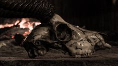 Hoedspruit, the hunter's fireplace - © Flair Photography by Salome Richter