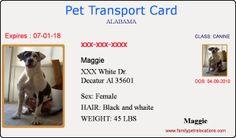Pet Travel-Pet ID Card