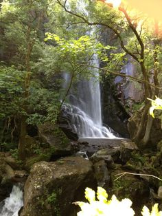 Cascada en la #RibeiraSacra #Galicia #Spain by @Palomavf_Lugo via Twitter