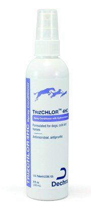 cat shampoo dermatitis - Dechra TrizChlor Spray Conditioner 8 oz >>> See this great product. (This is an affiliate link) Cat Climbing Shelves, Fungal Infection Skin, Cat Shampoo, Healthy Skin, Conditioner, Personal Care, Horses, Bottle, Cats