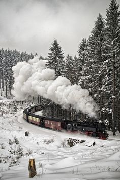 -ốc- Snow Train, The Black Forest, Germany.-ốc-Snow Train, The Black Forest, Germany. Winter Szenen, Winter Time, Winter Christmas, Christmas Train, Merry Christmas, Sweden Christmas, Christmas Express, Paris Winter, Holiday Train