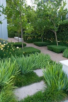 Garden Landscaping Philippines Dayliles Boxwood & Iris in this contemporary & very formal garden.Garden Landscaping Philippines Dayliles Boxwood & Iris in this contemporary & very formal garden. Modern Garden Design, Contemporary Garden, Landscape Design, Formal Gardens, Small Gardens, Outdoor Gardens, Modern Landscaping, Garden Landscaping, Garden Spaces