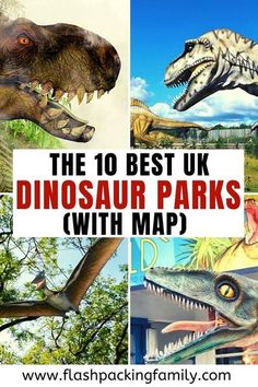 Looking for somewhere to see dinosaurs in the UK? We have listed 10 of the best dinosaur parks in the UK for dinosaur fans   Dinosaur Theme Park   Dinosaur Museum   Dinosaur Places   Dinosaur Attractions   UK Attractions   UK Dinosaur Parks   Family Days Out UK   Days out with Kids UK   Dino Park   Dinosaur Trails Dinosaur Theme Park, Dino Park, Dinosaur Museum, The Good Dinosaur, Family Days Out Uk, Days Out With Kids, British Seaside, British Countryside