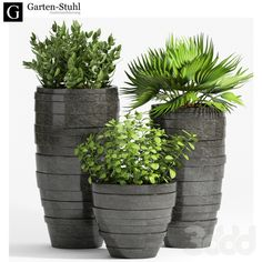 Outdoor garden pots trio of gorgeous tall modern contemporary indoor plant 31 workwithnaturefo