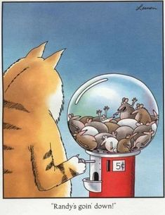 Millions of people all over the world were fans of The Far Side! The Far Side was a single-panel comic created by Gary Larson Cartoon Jokes, Funny Cartoons, Funny Comics, Funny Cats, Funny Animals, Baby Cartoon, Animal Memes, Far Side Cartoons, Far Side Comics