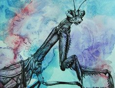 Pen and Ink Stippled Insect on Watercolor Background - Conway High School Art Project