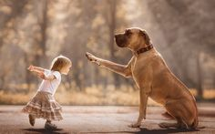 """Heartwarming photos of little kids with huge dogs as part of a collection from Russian photographer Andy Seliverstoff's book """"Little Kids and Their Big Dogs. Dogs And Kids, Animals For Kids, Animals And Pets, Cute Animals, Big Dog Breeds, Huge Dogs, Dog Photography, Mans Best Friend, Pet Care"""