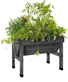Compact VegTrug Patio Garden in Charcoal | Convenient Elevated Raised Bed ($189)