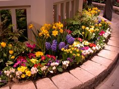 Annual Flower Bed Designs With Wooden Board Garden Ideas