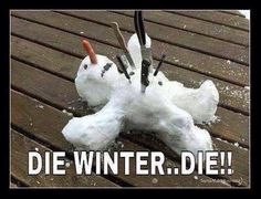 Die Winter funny quotes winter snow humor snowman winter quotes winter humor funny winter quotes quotes for winter best winter quotes great winter quotes cold winter quotes Winter Quotes, Winter Meme, Snow Quotes, Quotes Quotes, Winter Sayings, Hatred Quotes, 2015 Quotes, Pain Quotes, Hindi Quotes