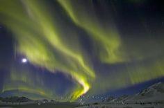 Photo:  Tombstone Mountain Northern Lights