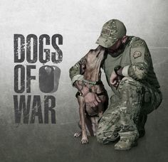 Check out A&E's shows lineup. Military Working Dogs, Military Dogs, Police Dogs, Military Veterans, Shelter Dogs, Rescue Dogs, Animal Rescue, Brave Animals, Wounded Warrior