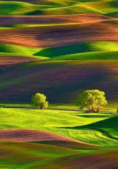 Amazing Photography, Landscape Photography, Nature Photography, Night Photography, Landscape Photos, Photography Tips, Travel Photography, Beautiful World, Beautiful Images
