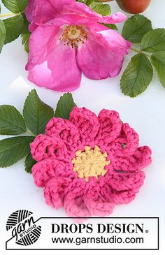 Rosehip - Briar rose ~ free pattern ᛡ